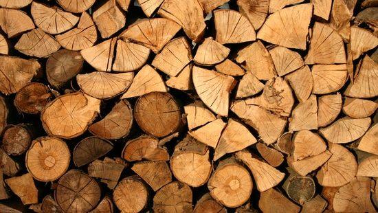 Tips bij kiezen juiste hout