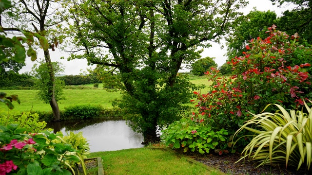 Tuin aan huis